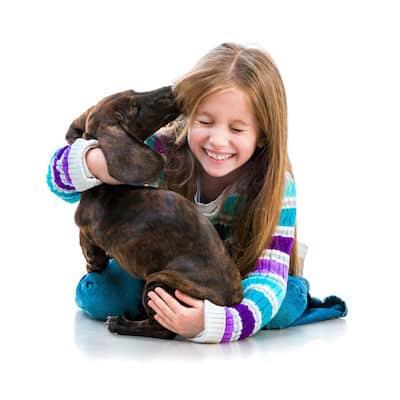 Assurance animaux Crédit Mutuel