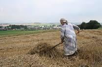 La MMA, aussi au service des agriculteurs !